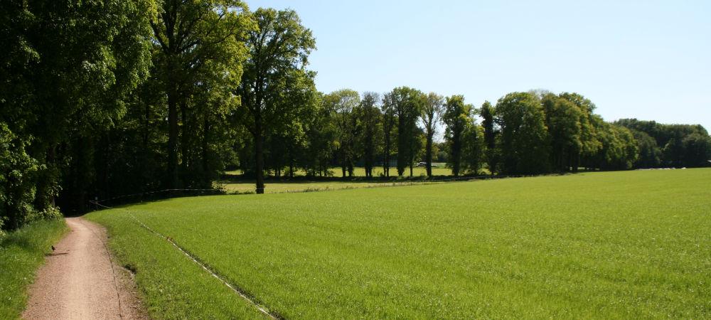 Vakantie in Twente
