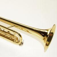 Muziek trompetles